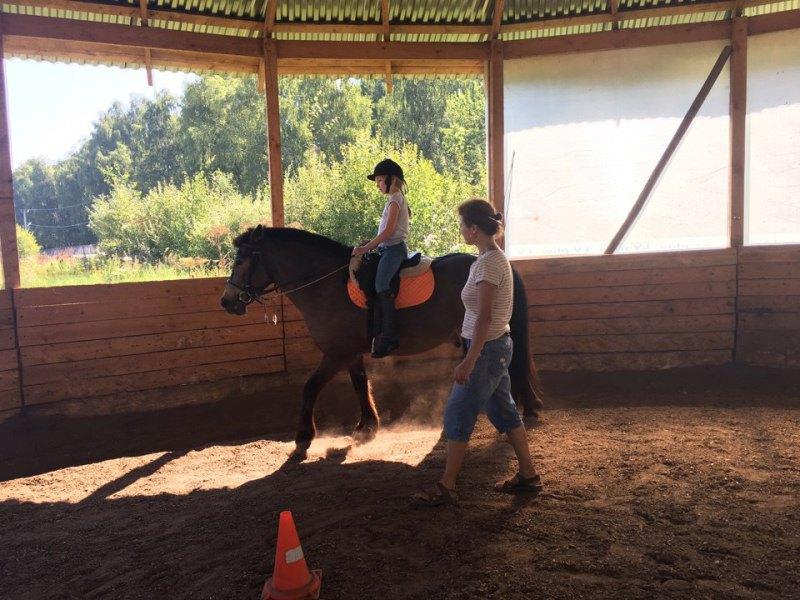 Пони клуб- 800р/30 минут   http://horse-way.ru/