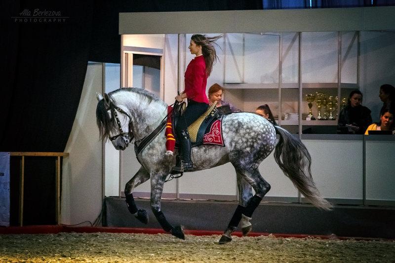 Шоу Елены Чистяковой с испанцем Romano Var на выставке Эквирос в Москве