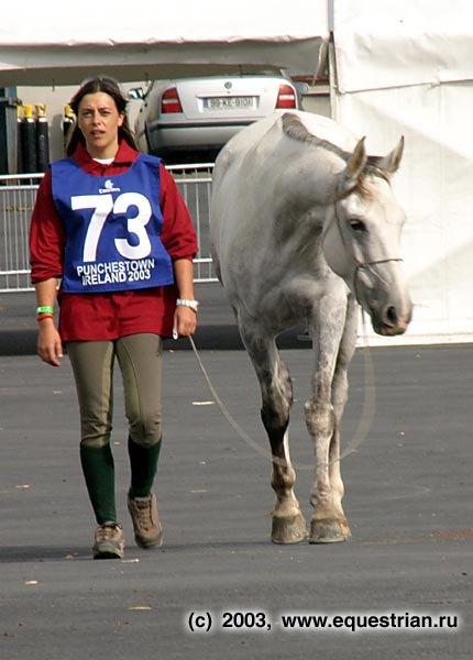 Первая ветинспекция лошадей. Пробеги.