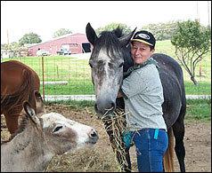 Сторми любит ласку и готова поделиться сеном с осликом