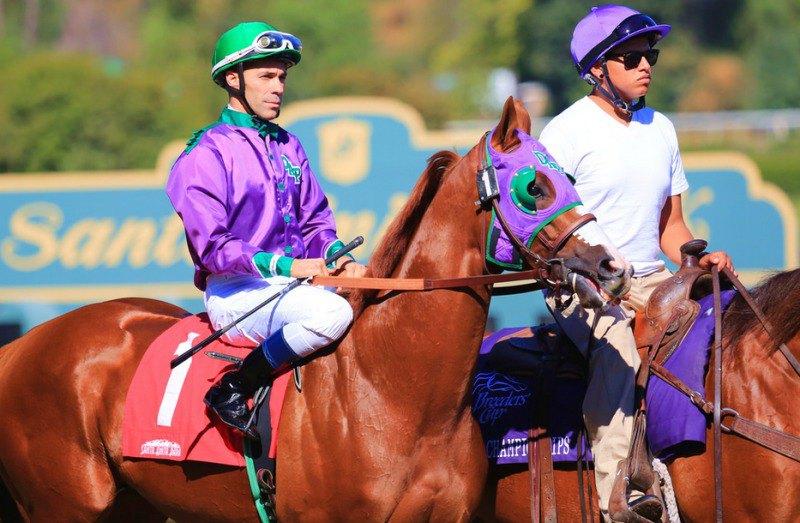 Ипподром Santa Anita Park 2013 год, скачка Golden State Juvenile Stakes, где Рыжий финишировал шестым.