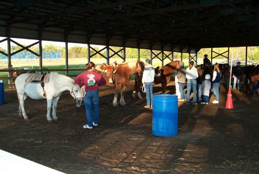 Ведущие с лошадьми перед началом урока.