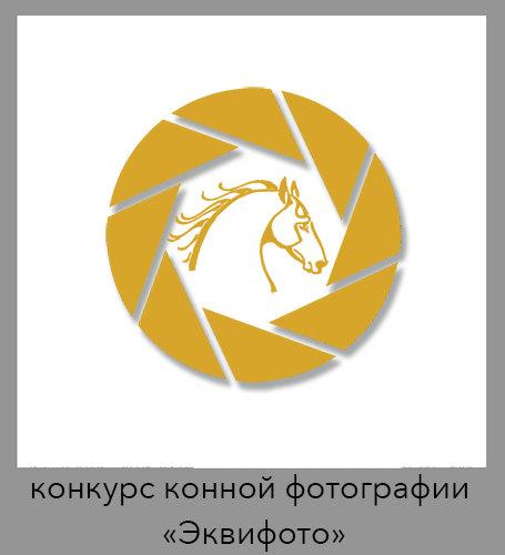 На лого изображён профиль донского жеребца Глицерина69 (Цейса)