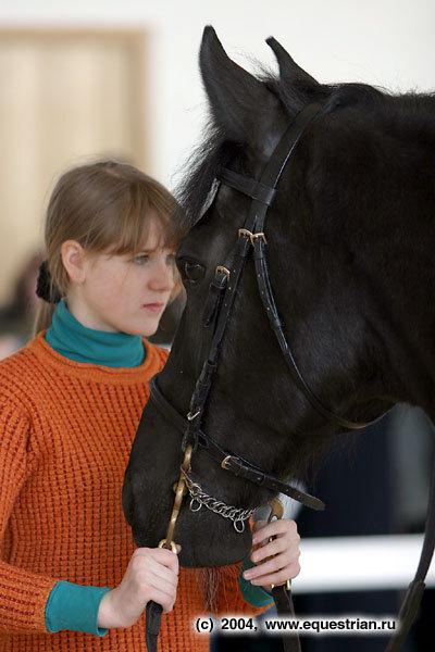 Семинар фирмы Каунти Седдлери, посвященный правильному выбора седла для лошади