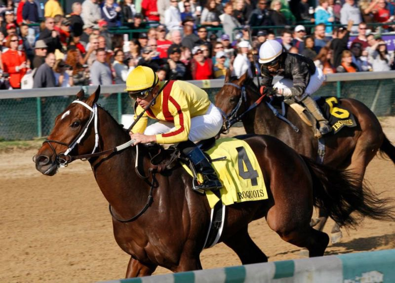 Ипподром Churchill Downs 2010 год, скачка Iroquois Stakes.