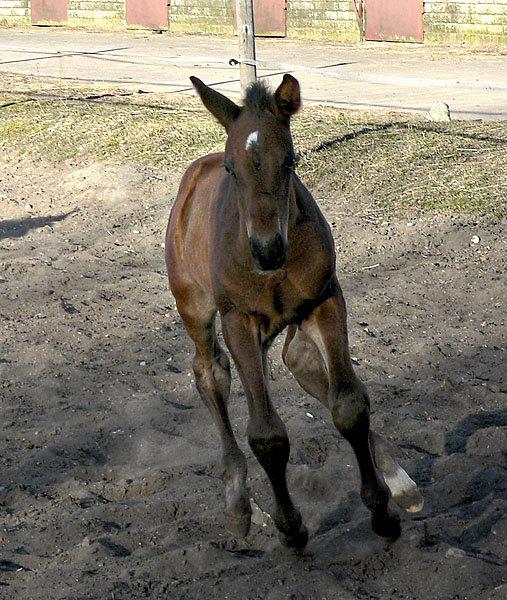 Пока без имени. Клейсты, Рига, 1.04.2007