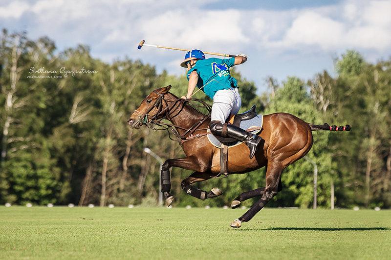 Кубок Федерации России по конному поло