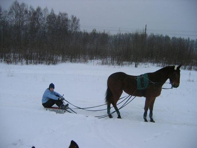 и конь качает и мыщцы, и мне ничего делать  не надо, только сиди и наслаждайся прогулкой.