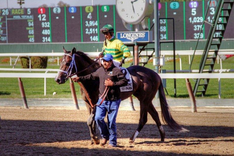 Ипподром Belmont Park 2014 год, скачка Futurity Stakes - Gr. 2