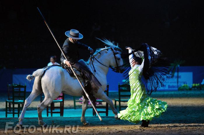 Андалусия в седле, конные игры 2008