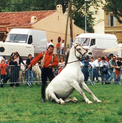 посадил лошадь- а сам все кнутом размахался- налево- направо,,,
