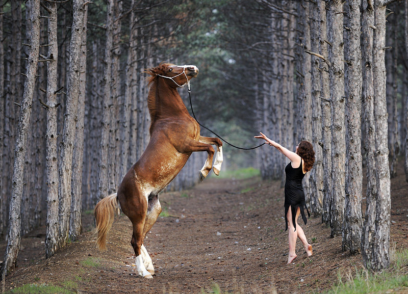 Наши с Мальвиной танцы в лесу.Автор фото-Светлана Петрова