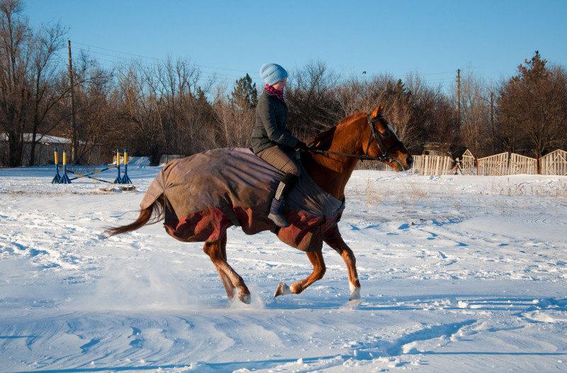 Из-за осторожности жеребца, его аллюры стали просто божественно-мягкими) Одно удовольствие ездить без седла :)