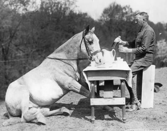 """Сержант Матьюсон и """"Противогаз"""", Третья Кавалерия, US ARMY , 1926"""