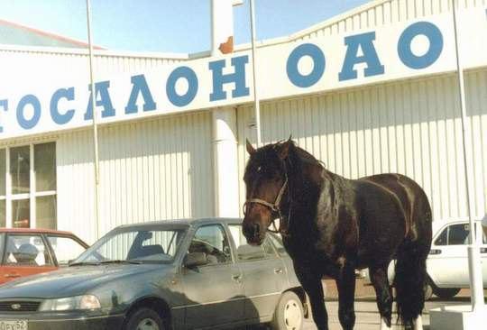 На парковке возле ярмарки, Н. Новгород.