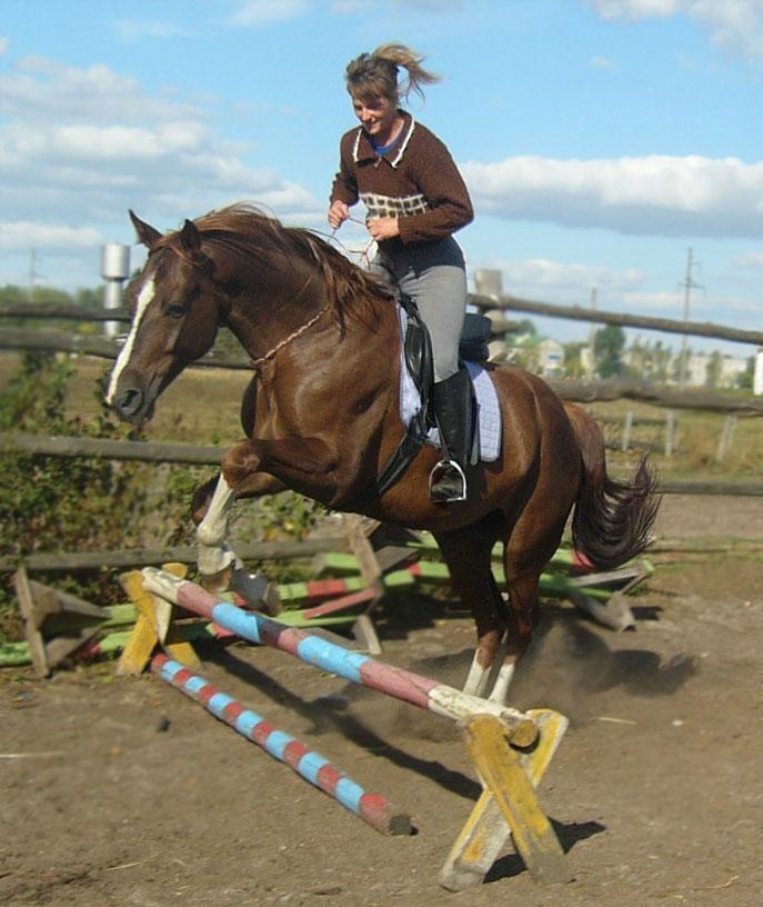Ирина Степановна, наша тренер по конкуру и её собственный конь. Ему всего шесть лет, а он уже калека:получил рорер в своей прошлой жизни выезкового коня в другой школе...