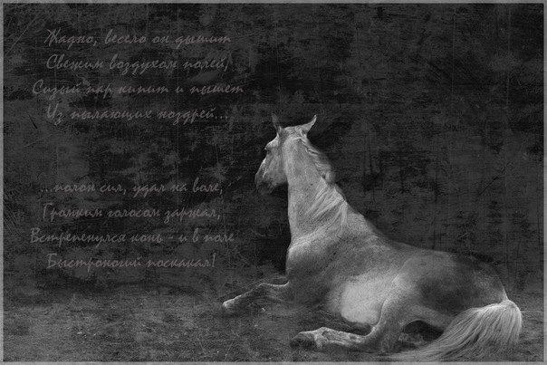 Жадно, весело он дышит Свежим воздухом полей, Сизый пар кипит и пышет Из пылающих ноздрей, Полон сил, удал на воле, Громким голосом заржал, Встрепенулся конь - и в поле Быстроногий поскакал!