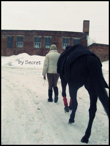 с конём по полю идём