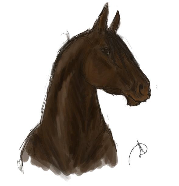 Коня! Коня! Пол-царства за коня....