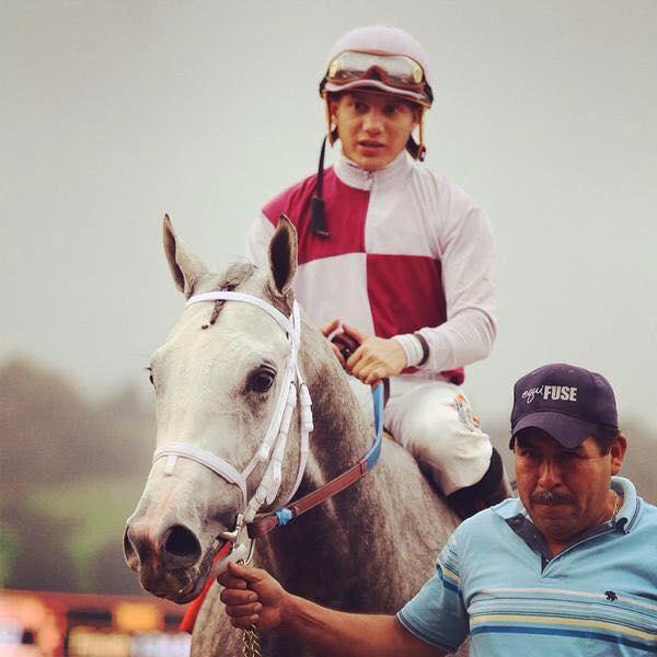 победы в сезоне. Ипподром Santa Anita 2015 год ,скачка Sham Stakes - Gr. 3