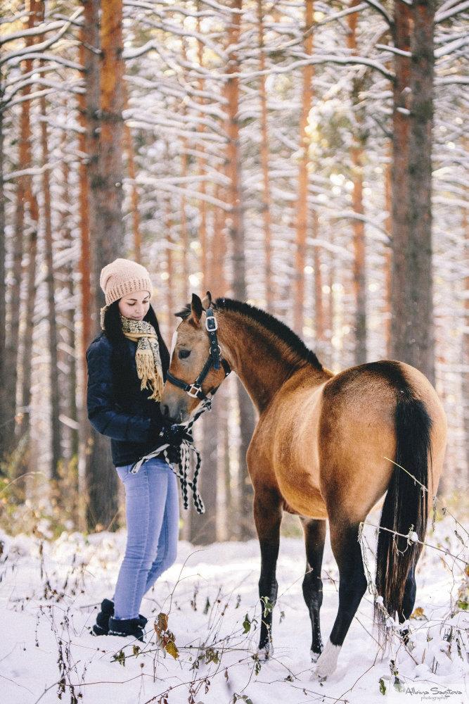 Уэльский пони Joy Thunder и Катя, г. Новосибирск