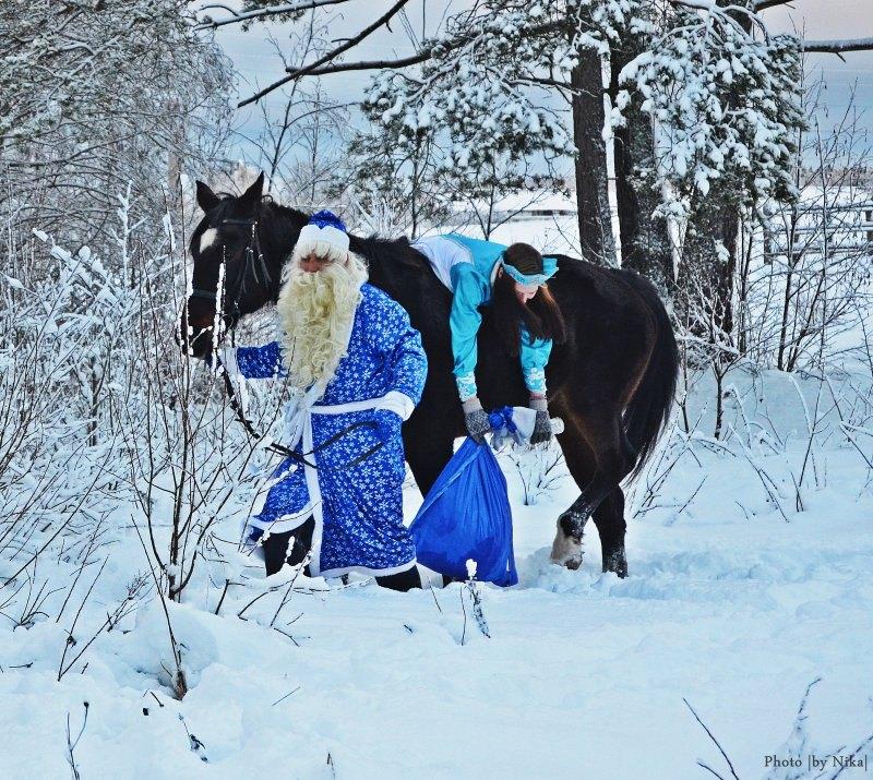 Дед Мороз,Снегурочка и русская рысачка Фантастика ( Фламенко - Сэр Скотт)