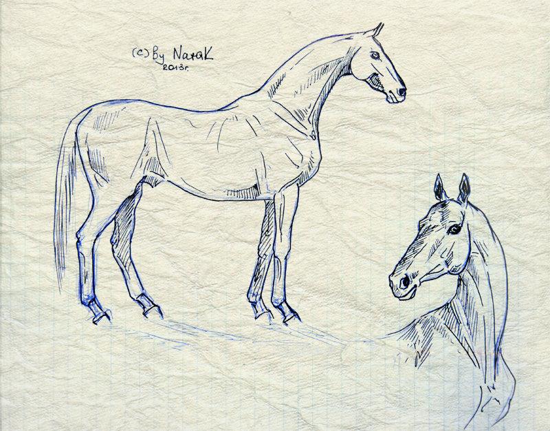 Пыталась вспомнить, как рисовать ахалтекинцев, называется...