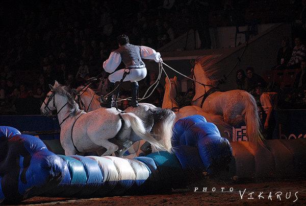 Конные игры / Мир, покоренный лошадьми - шоу Лоренцо