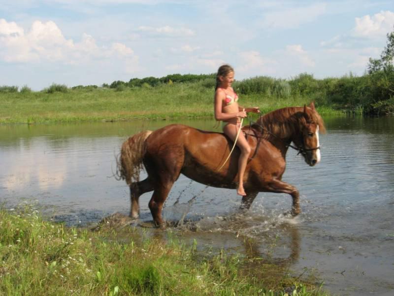 Эта лошадка такая безмозглая ;) хехе ноги всем об деревья обкорябала! А в этот день такая лапочка была!
