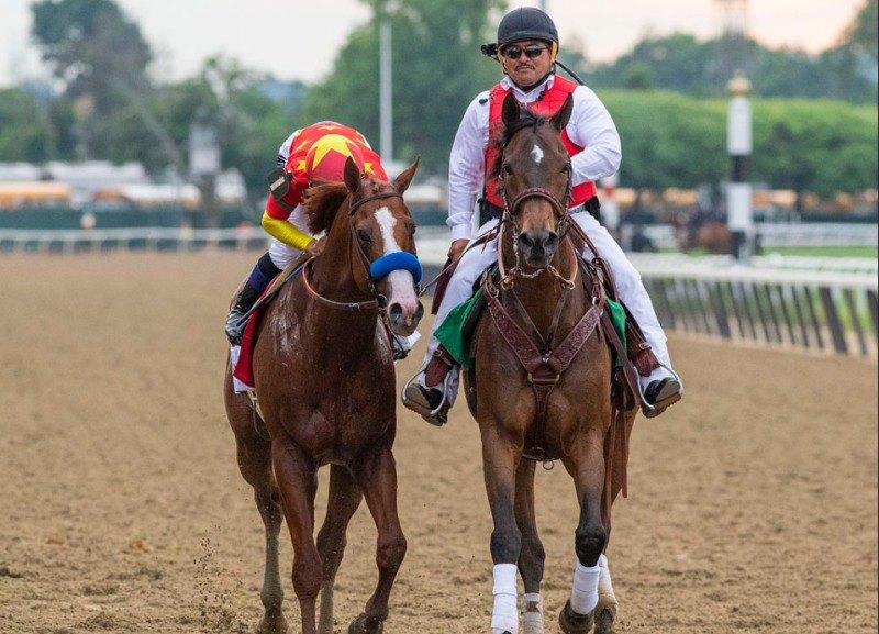 Ипподром Belmont Park, скачка Belmont Stakes (последний этап Тройной Короны) 2018 год.