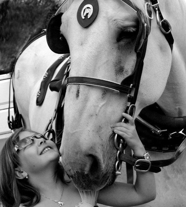 девочка, которая любит лошадок и большая лошадка, которая полюбила девочку:)