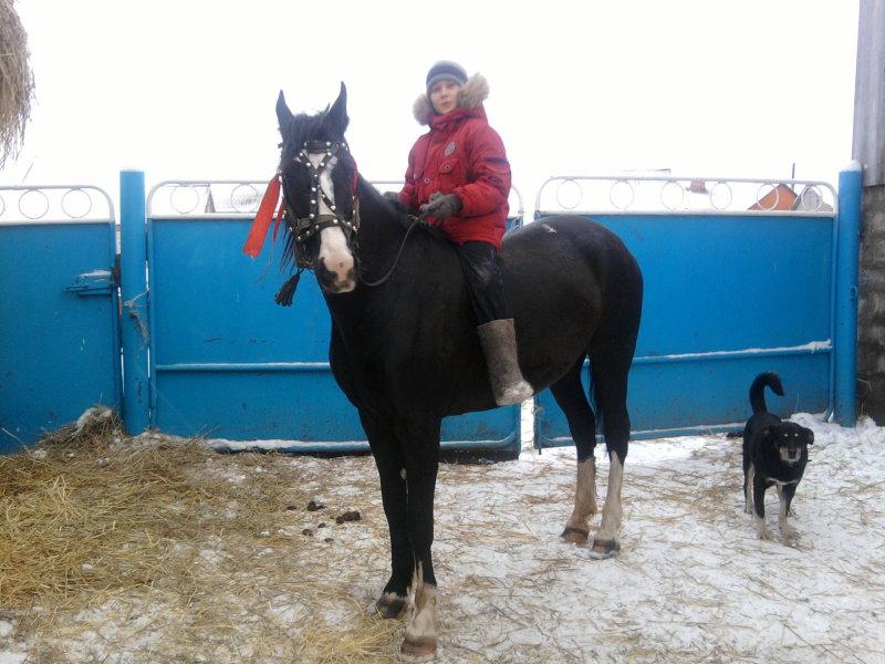 я и лошадь