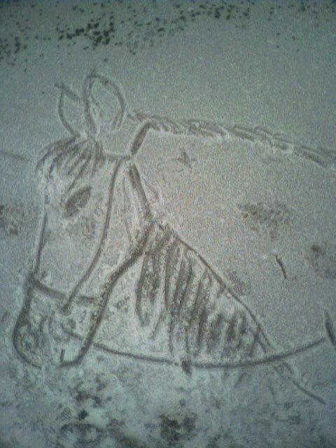 Детский рисунок на снегу - Вереск