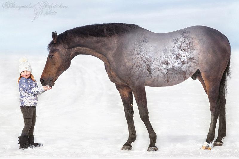 Про то, как одна девочка лошадке зиму скормила =)