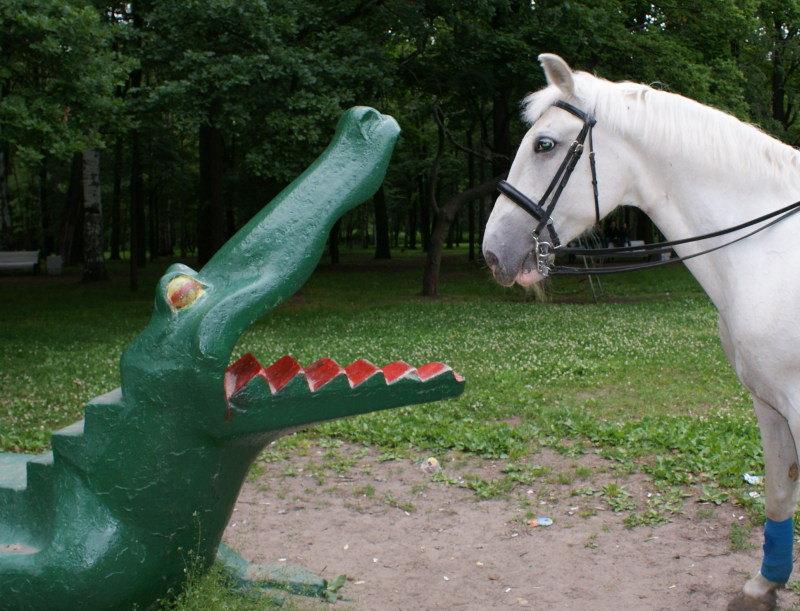 ....однажды в парке))