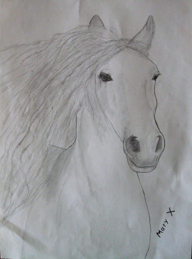 Рисунок простым карандашом
