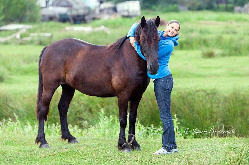 Вот такие местные полесские лошади водятся в Белоруси. полесками любят писать всех кого не лень,но на самом деле они вот такие - маленькие темненькие)