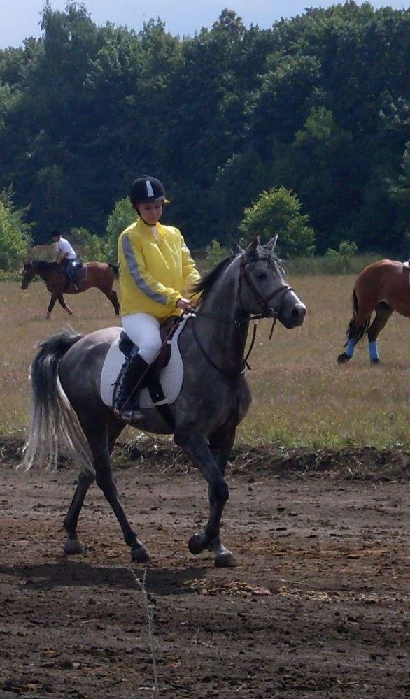 завиваловский конный завод 2009г