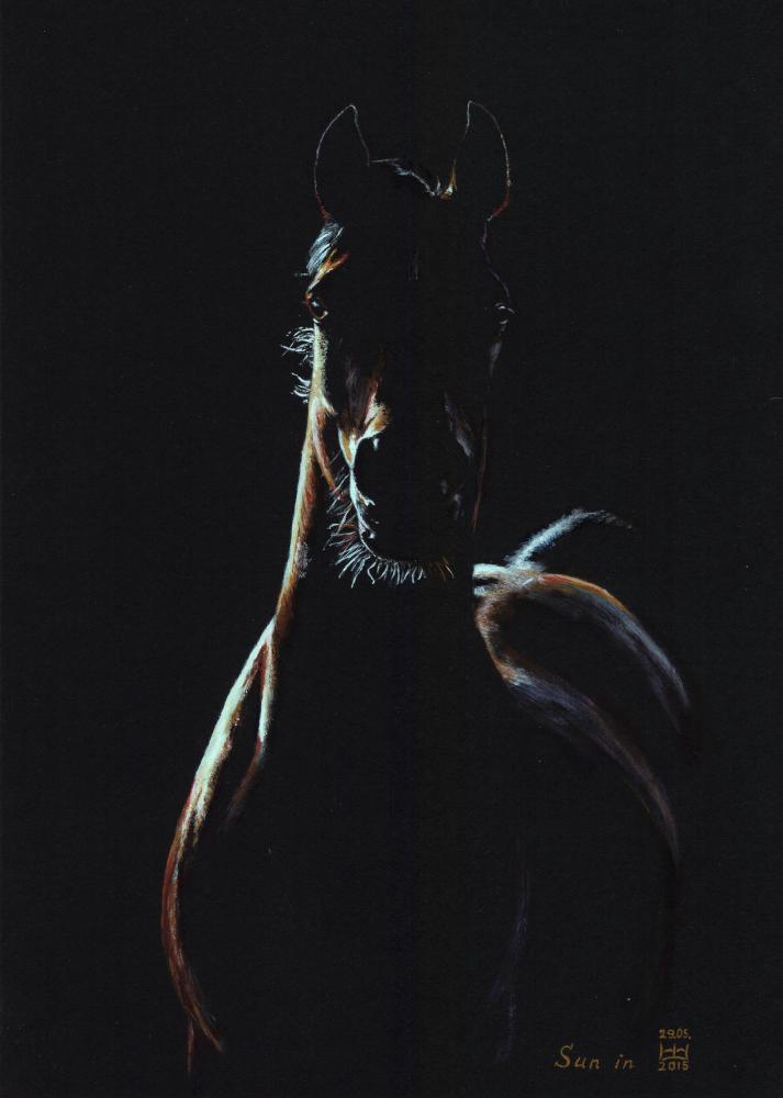 Картон чёрный, акриловые краски. Формат 21см х 31см. По фото Макаровой Виктории.