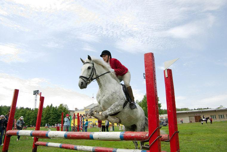 Соузга - конкурная лошадка:)