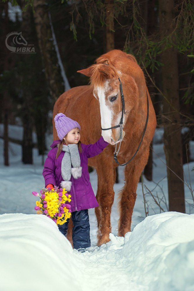 Фотограф: Любовь Успенская, запись по телефону 8 (926) 523 32 03 Татьяна