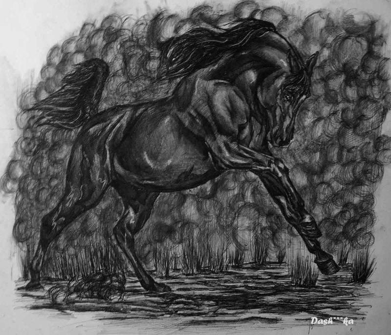 ПОЗДРАВЛЯЮ всех вас с праздником!!!!!!!!!!!Желаю счастья любви, здоровья, ну и конечно всего наилучшего вашим лошадкам, и вообще чтоб вы их как можно чаще видели и были с каждым днем все счастливее!!!!))))