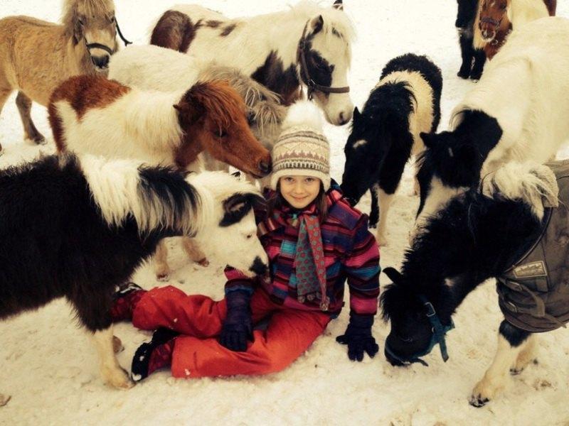 Американские миниатюрные лошадки фермы Идальго http://mini-pony.ru и их маленькая хозяйка Машенька