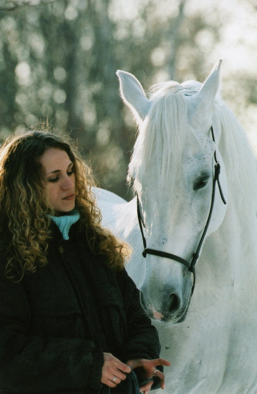 ... и света, и лошади...