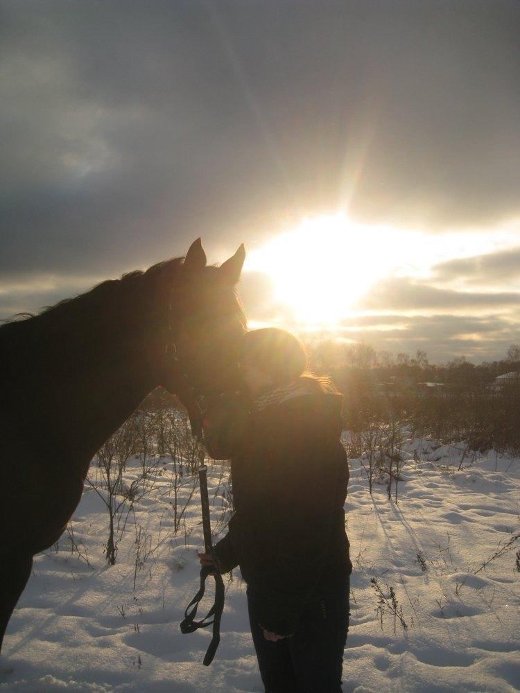 ...в лучах уходящего солнца