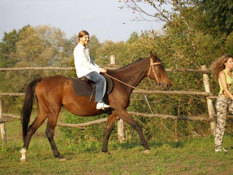 Подруга впервые села на лошадь :)