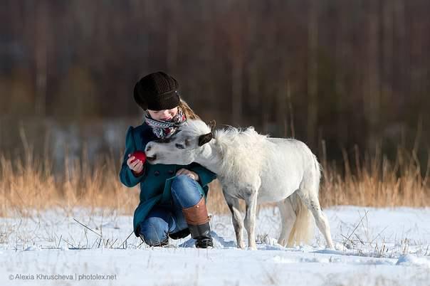 Мини лошадка из Идальго и ее маленькая хозяйка. Фото Алексии Хрущевой.