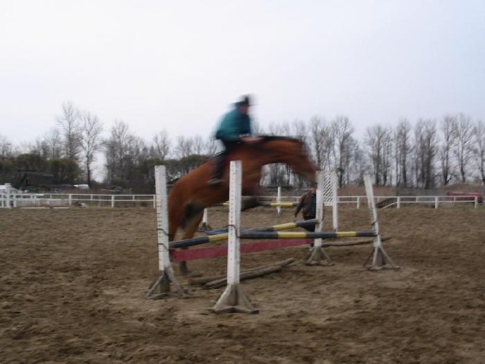 Предпоследняя тренировка перед соревнованиями