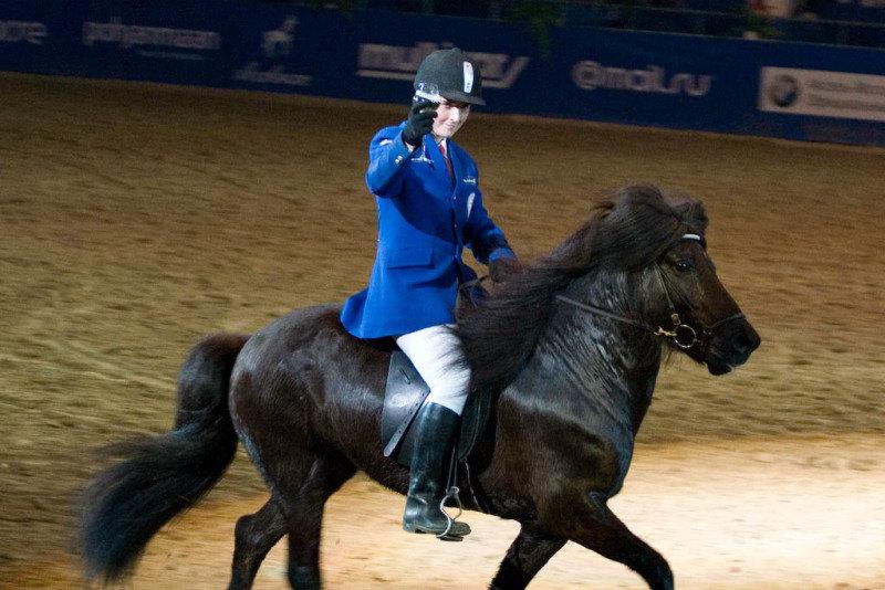"""Шоу """"Мир, покорённый лошадьми""""."""