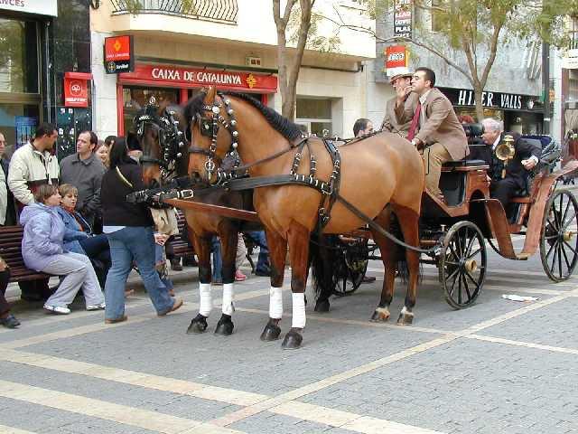 Распорядители праздника, а какие ухоженные лошади!